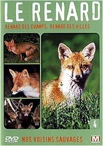Nos voisins sauvages : Le renard : Renard des champs, renard des villes