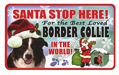 santa-stop-here-pet-sign-border-collie