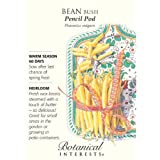Bean Bush Pencil Pod Yellow Seed