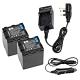 DSTE 2pcs VW-VBN260 Replacement Li-ion Battery + Charger DC126U for Panasonic VBN260, VW-VBN130 and Panasonic HC-X800, HC-X900, HC-X900M, HC-X910, HC-X920, HC-X920M, HDC-HS900, HDC-SD800, HDC-SD900, HDC-TM900 Digital Cameras (Fully Decoded)