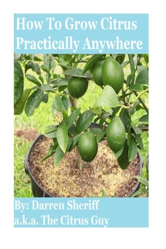 how-to-grow-citrus-practically-anywhere