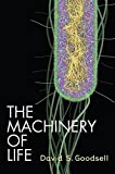 img - for The Machinery of Life by David S. Goodsell (2010-04-16) book / textbook / text book