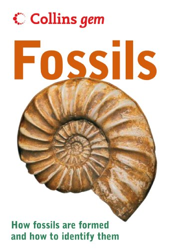 fossils-collins-gem