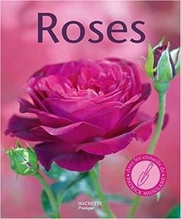 Variétés de roses