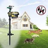 77tech Solar Sensor Motion Activated Animal Sprinkler Repeller with Solar Sensor Housing,Scarecrow Adjustable
