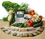 Non GMO Heirloom Vegetable Seeds Survival Garden 30 Variety Pack
