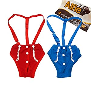 Alfie Pet Apparel - Jay Diaper Dog Sanitary Pantie with Suspender Set - Size: M (for Girl Dogs)