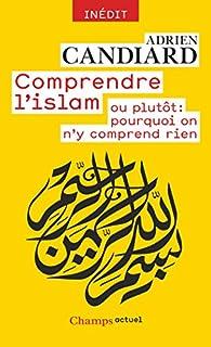 Comprendre l'islam ou plutôt : pourquoi on n'y comprend rien