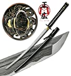Masahiro - Folded Steel Samurai Sword - 1000+ Layers - Dragon by Top Swords