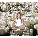Indigo Dreams:Wellness Garden