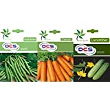 DCS Bush Bean, Carrot And Cucumber Seeds (Pack Of 2 Per Pack 50 Seeds)