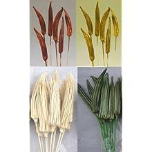 Green Floral Crafts Okra Pod 19