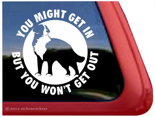 You Might Get In But You Won'T Get Out ~ Bernese Mountain Dog Vinyl Window Decal Dog Sticker front-463051