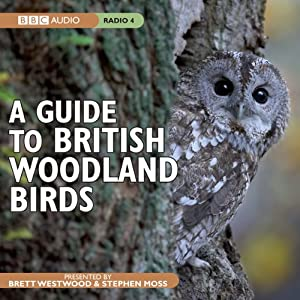 A Guide to British Woodland Birds | [Stephen Moss]
