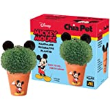 Chia Pet Disney's Mickey Mouse Handmade Decorative Planter (Discontinued by Manufacturer)