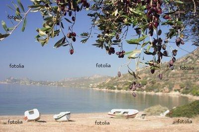 "Wallmonkeys Peel and Stick Wall Graphic - Mediterranean Beach - 24""W x 16""H"