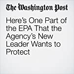 Here's One Part of the EPA That the Agency's New Leader Wants to Protect | Brady Dennis