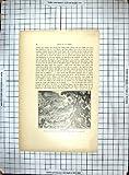 旧式な印刷物の 1884 のアフリカの船の嵐の Coffinieres の台風の海 Chronica