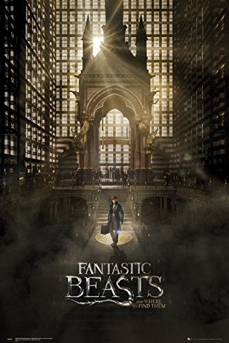 Poster Fantastic Beast and Where to find them - One Sheet 1/Newt Scamander (61cm x 91,5cm)