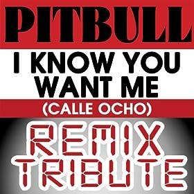 Pitbull - I Know You Want Me (Calle Ocho) (File MP3 Single)