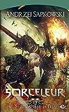 Le Bapt�me du feu: Sorceleur, T5