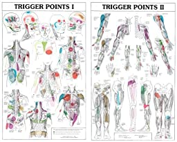 Laminated Trigger Point Charts Set (I & II)