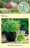 Lawn & Patio - Seed Savers Exchange 982 Open-Pollinated Herb Seeds, Stevia