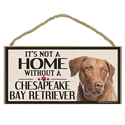 Imagine This Wood Sign for Chesapeake Bay Retriever Dog Breeds