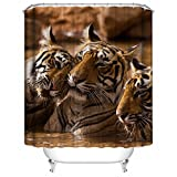 AQWI4R Largest Member Of The Cat Family Unique Personality Shower Curtains 72x72inch 180x180cm
