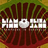Honest Face ~ Liam Finn + Eliza Jane