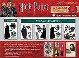 Harry Potter Wall Artwork - Dark Arts Collection
