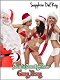 img - for Santa's Sorority House Gangbang (Stocking Stuffers) book / textbook / text book