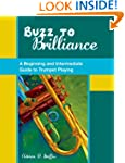 Buzz to Brilliance: A Beginning and I...