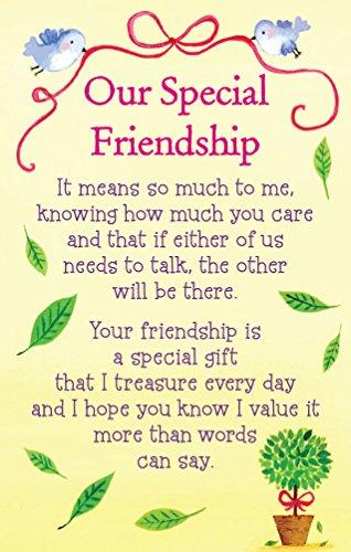 heartwarmers-our-special-friendship-keepsake-card-envelope-35-x-2-code-k100e