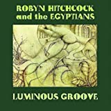 What You Is - Robyn Hitchcock & The Venus...