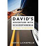 David's Adventure with Schizophrenia: My Road to Recoveryby David, Artist LaChapelle
