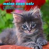 Maine Coon Cats Calendar - 2015 Wall calendars - Cat Calendar - Kitten Calendar - Monthly Wall Calendar by Magnum