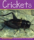 Crickets (Insects)