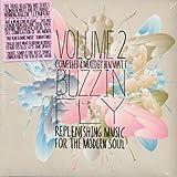 Buzzin Fly 2 Mixed By Ben Watt