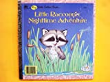 Little Raccoon's Nighttime Adventure (Big Little Golden Books)