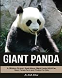 Giant Panda: A Children Pictures Book About Giant Panda With Fun Giant Panda Facts and Photos For Kids