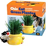 Chia Cat Grass Planter Featuring Sylvester & Tweety, 1 Kit