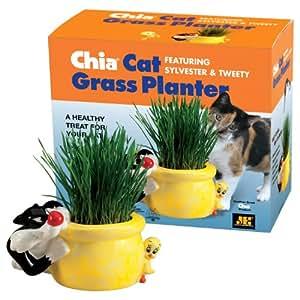 Chia Pet Cat Grass Planter