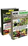img - for Mini Farming BOX SET 2 IN 1: A Pictured Guide For Beginners: 45 Essentials You Have To Know For Building Your Own Backyard Farm And 15 Common Mistakes ... (Backyard Homesteading and Urban Gardening) book / textbook / text book