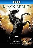 Black Beauty [HD]