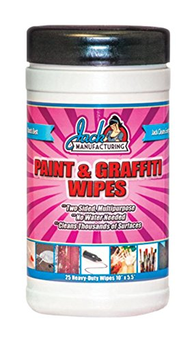 Paint Wipes (Pack of 25)