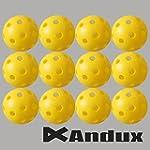 Andux 12 golf plastic practice balls...