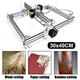 Craftsman 5500mw Laser Engraving Machine, 30x40cm CNC Router Machine 12V USB Laser Engraver Desktop CNC DIY Picture Making Printer (5500MW / 30x40cm)