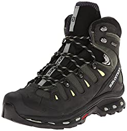 Salomon Women\'s Quest 4D 2 GTX Hiking Shoe, Sage Green/Asphalt/Flashy, 8 M US