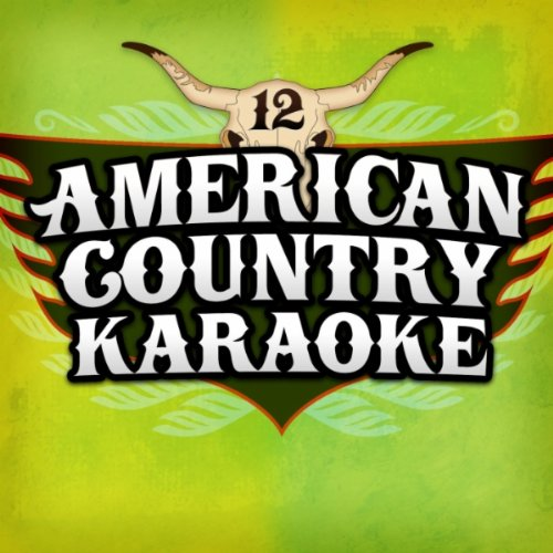 Today's Top Country Karaoke Hits, Vol. 12